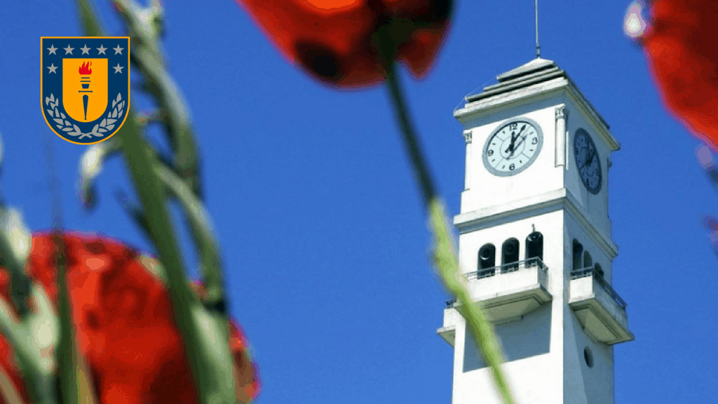 DENTIDESK, El software de la Facultad de Odontología de la U de Concepción