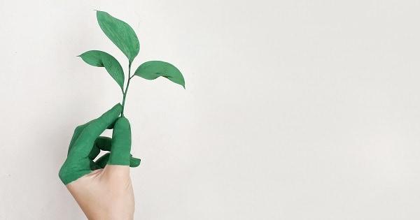 Eco-dentistas: odontología amigable con el medioambiente